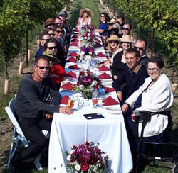 taste-profile-photo-Klopp-Family-Schatz-Vineyardx366-250x244