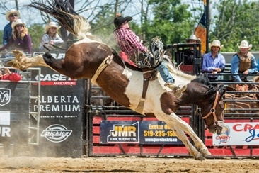 Exeter Rodeo event spotlight photo