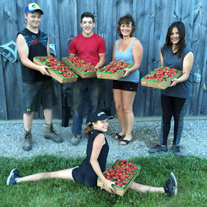 Photo: Masse Fruit & Vegetables Fruit Pickers
